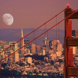 Stoli Guy Live in San Francisco