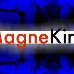 MagneKink: Attracting Queer Kinky Men to Strut
