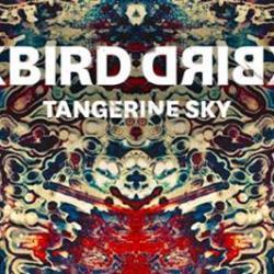 BLACKBIRD BLACKBIRD + BEAT CULTURE  | TOMORROW NIGHT @ The HI HO LOUNGE