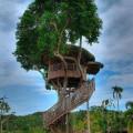 Treehouse Sessions: Rachel Torro & Peter Blick in the Loft